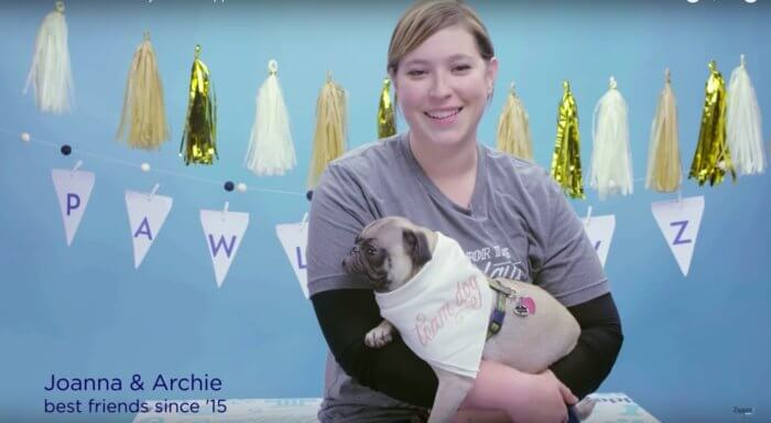 Zappos-Home-For-The-Pawlidayz